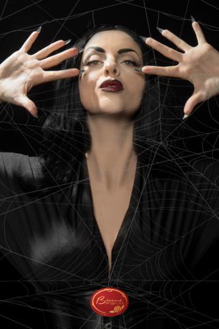 retro-halloween-spiderweb-lady-costume-makeup